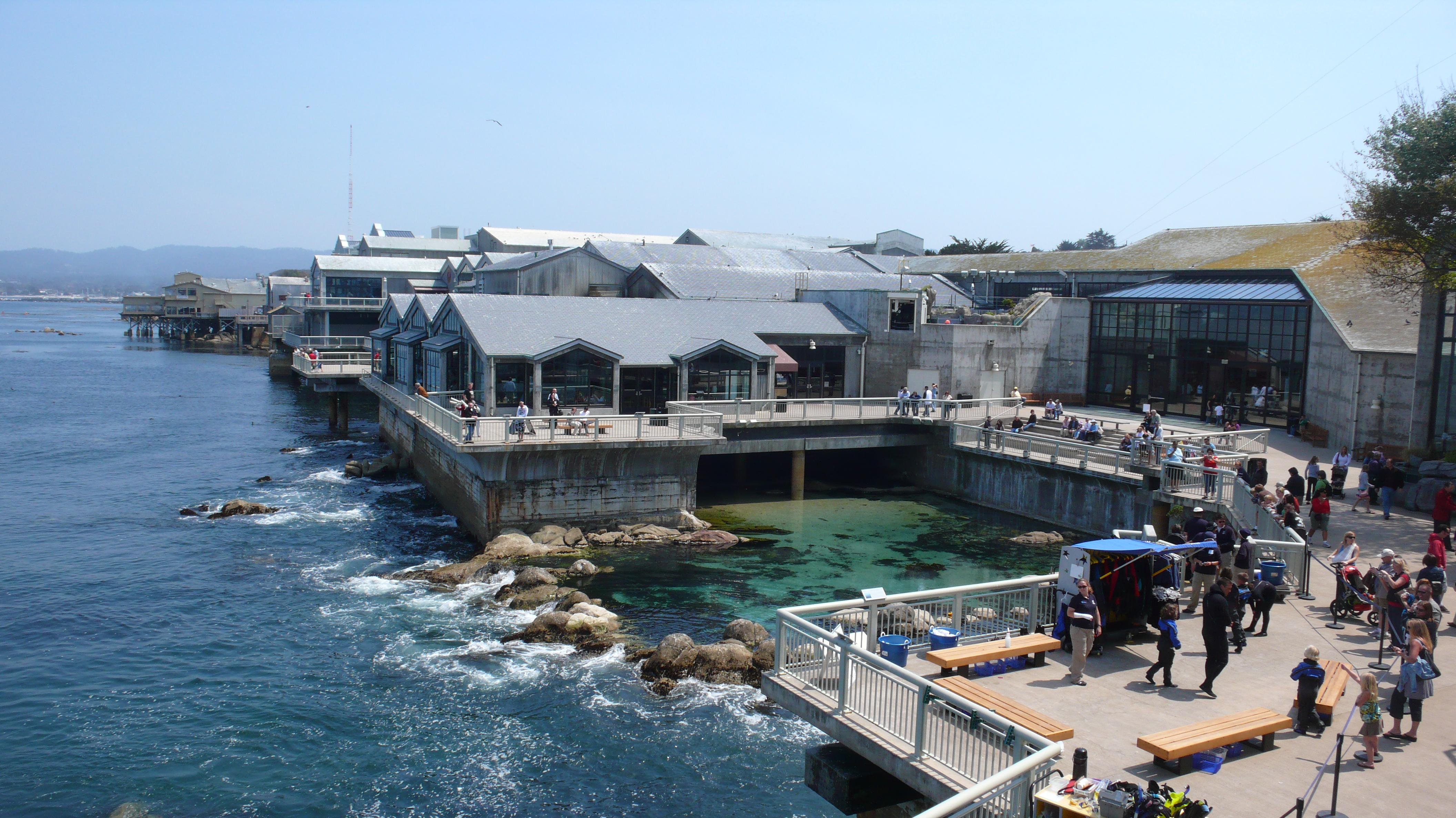 Monterey Bay Aquarium, MBA, Monterey Bay Aquarium Location