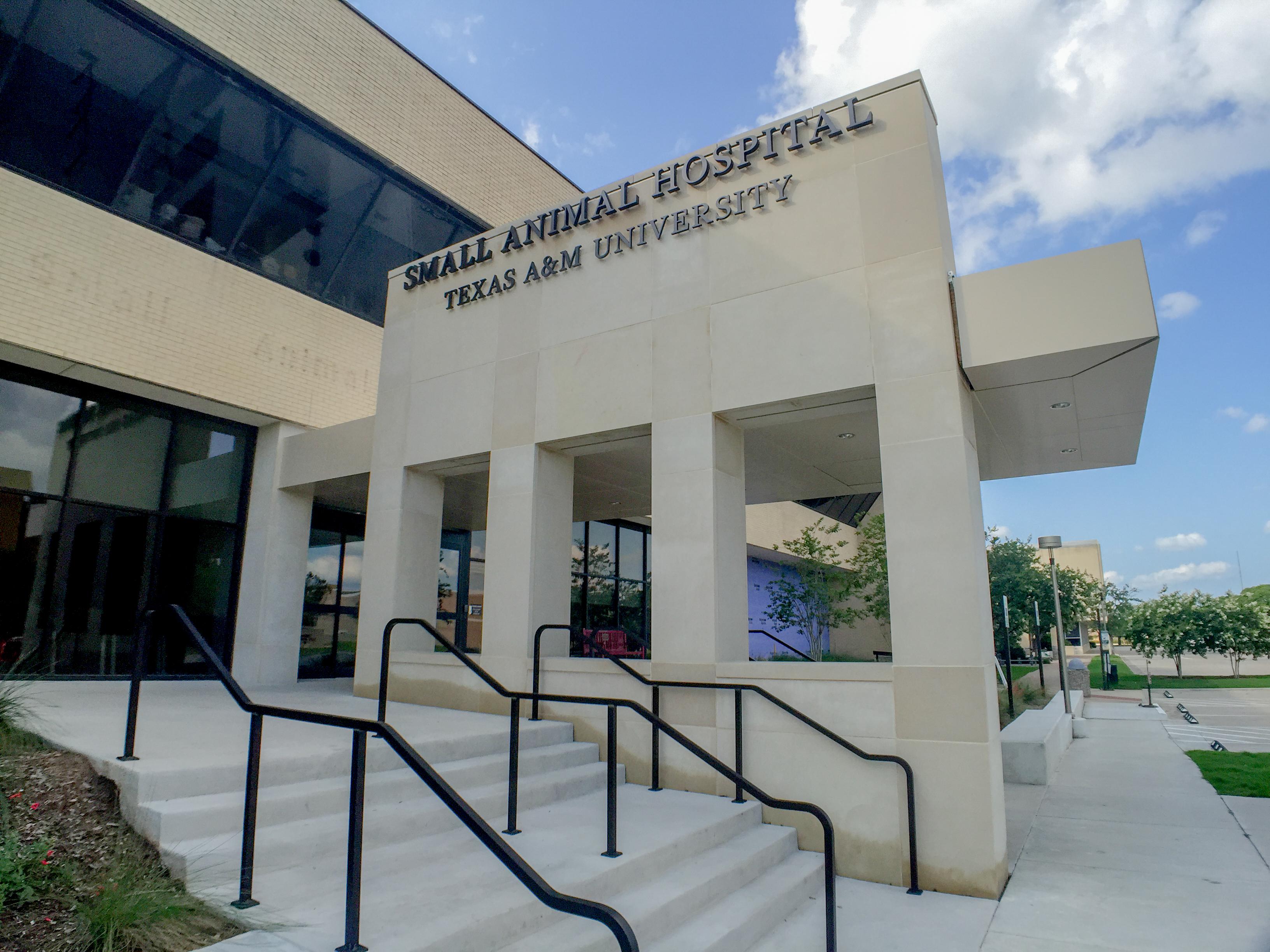 File:Small Animal Hospital
