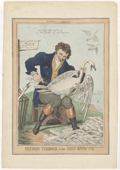 File:Cousin Thomas, or, the Swan River Job.jpg