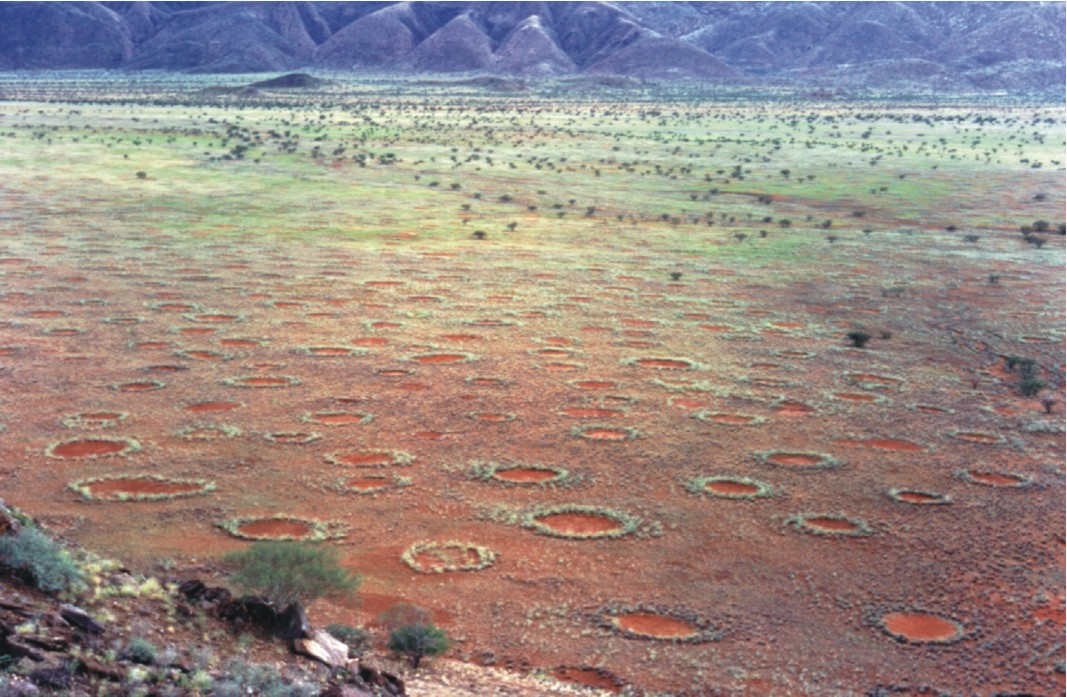 Fairy circles in the Marienflusstal area in Na...