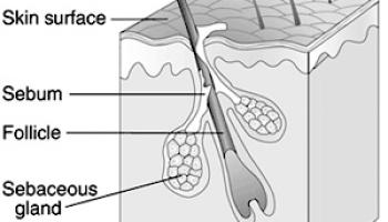 Trichoptilosis Hair