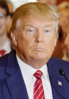 Bildresultat för donald trump