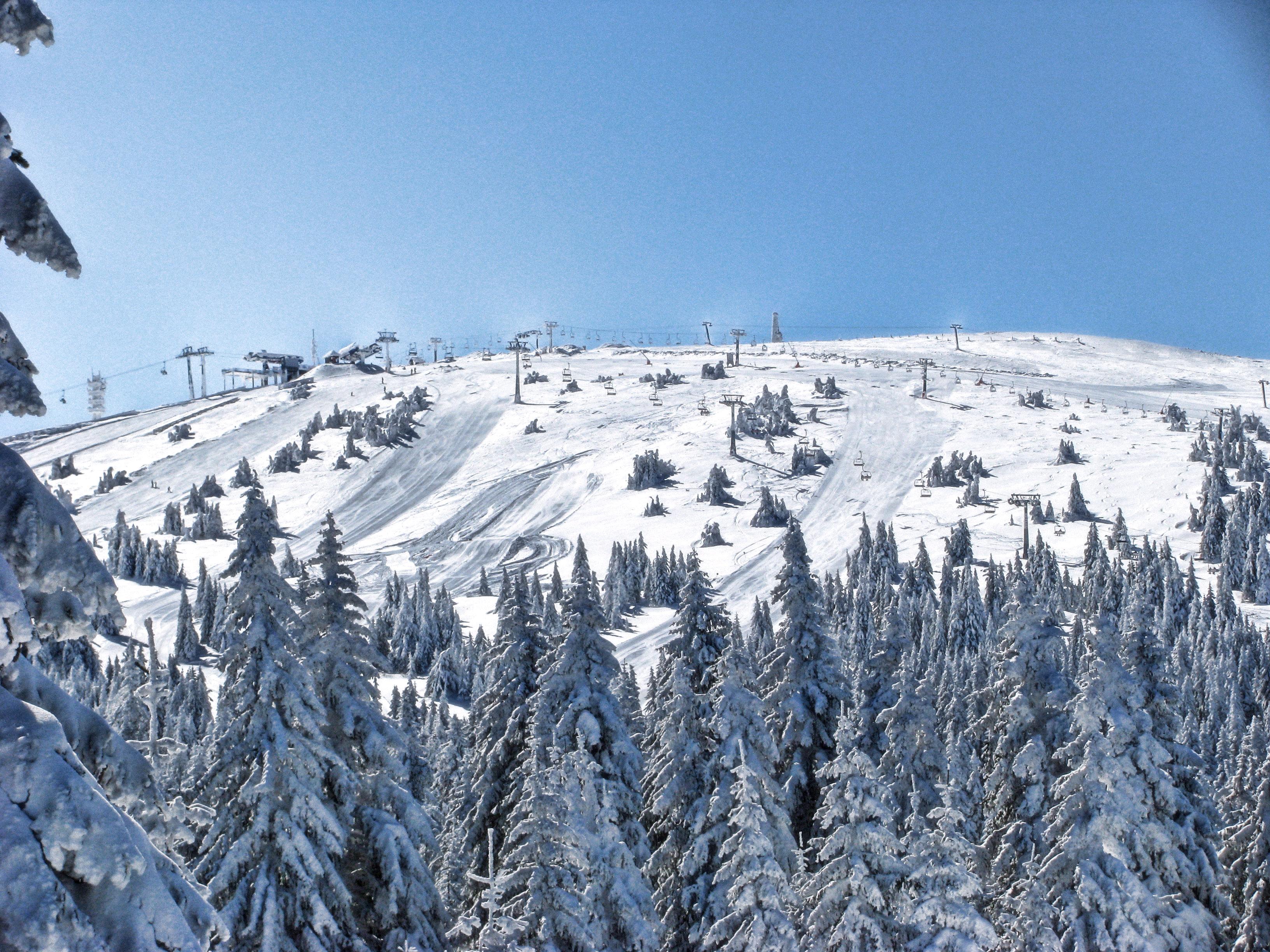 https://i2.wp.com/upload.wikimedia.org/wikipedia/commons/4/4c/Pan%C4%8Di%C4%87ev_vrh_during_winter.jpg