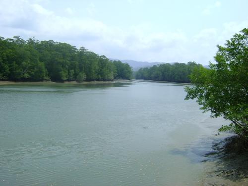 File:Rio Chucunaque.jpg