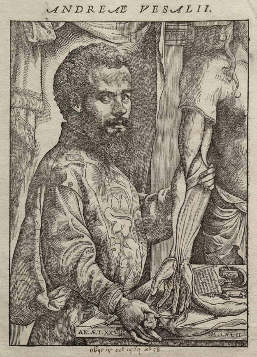 Vesalius Fabrica portrait.jpg
