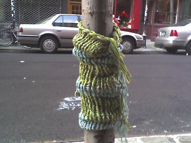 New York City treehugger.