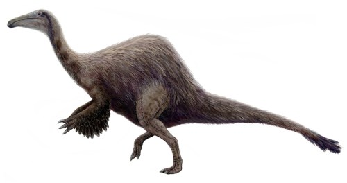 https://i2.wp.com/upload.wikimedia.org/wikipedia/commons/5/51/Hypothetical_Deinocheirus.jpg?resize=500%2C264