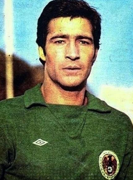 Nasser Hejazi Wikipedia