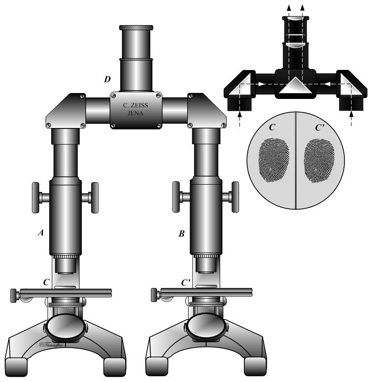 Comparison Microscope Wikipedia