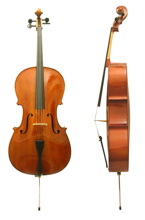 The front and side of the cello.