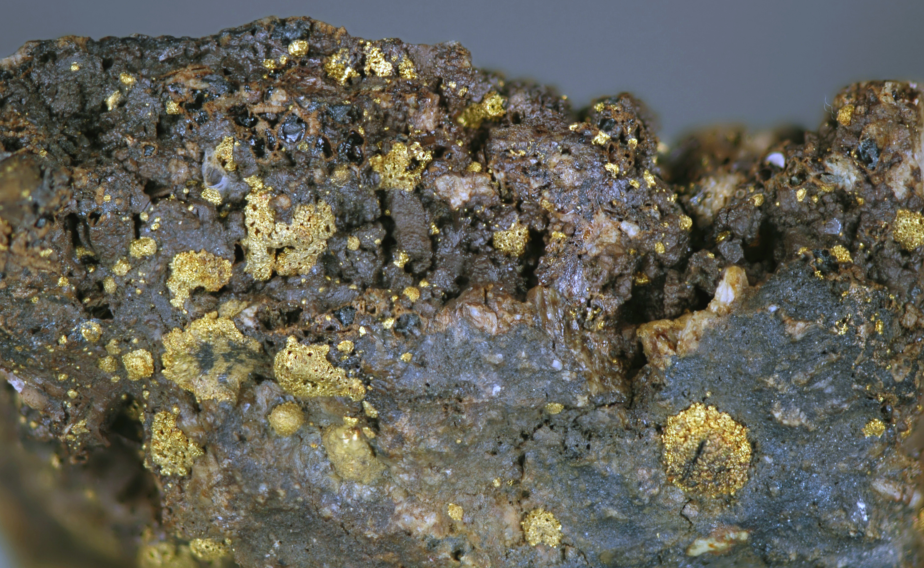 rich gold ore from Colorado