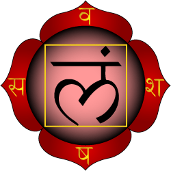 Muladhara chakra is shown as having four petal...
