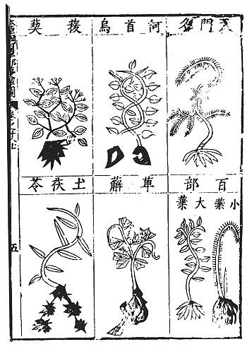 http://upload.wikimedia.org/wikipedia/commons/6/65/Compendium_of_Materia_Medica_(1603)_1.jpg
