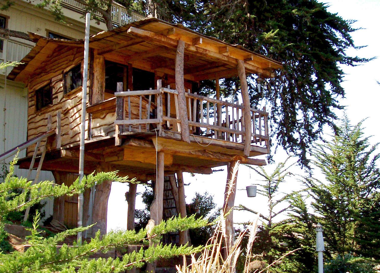 Exellent Home Design Tree House Design