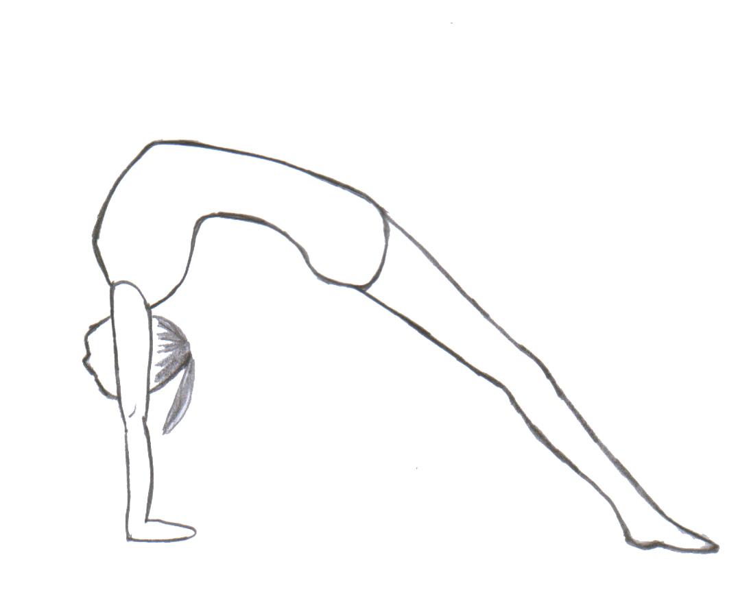 Mostek Gimnastyczny Wikipedia Wolna Encyklopedia