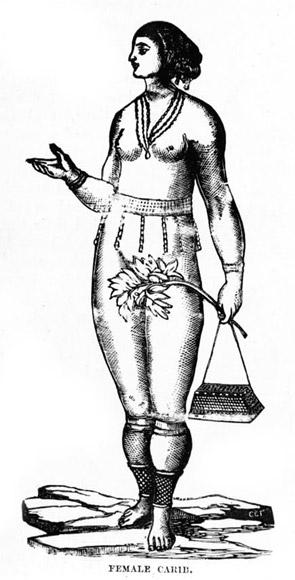 Archivo:Dibujo de mujer caribe.jpg