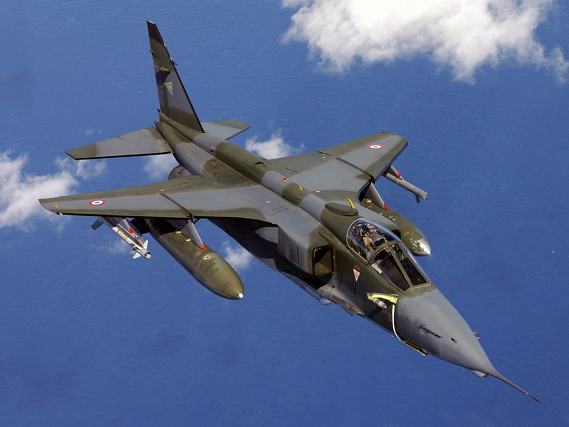 https://i2.wp.com/upload.wikimedia.org/wikipedia/commons/7/71/Jaguar_DF-SD-05-05511.JPEG