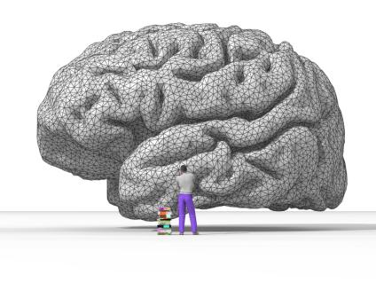 File:Nicolas P. Rougier's rendering of the human brain.png