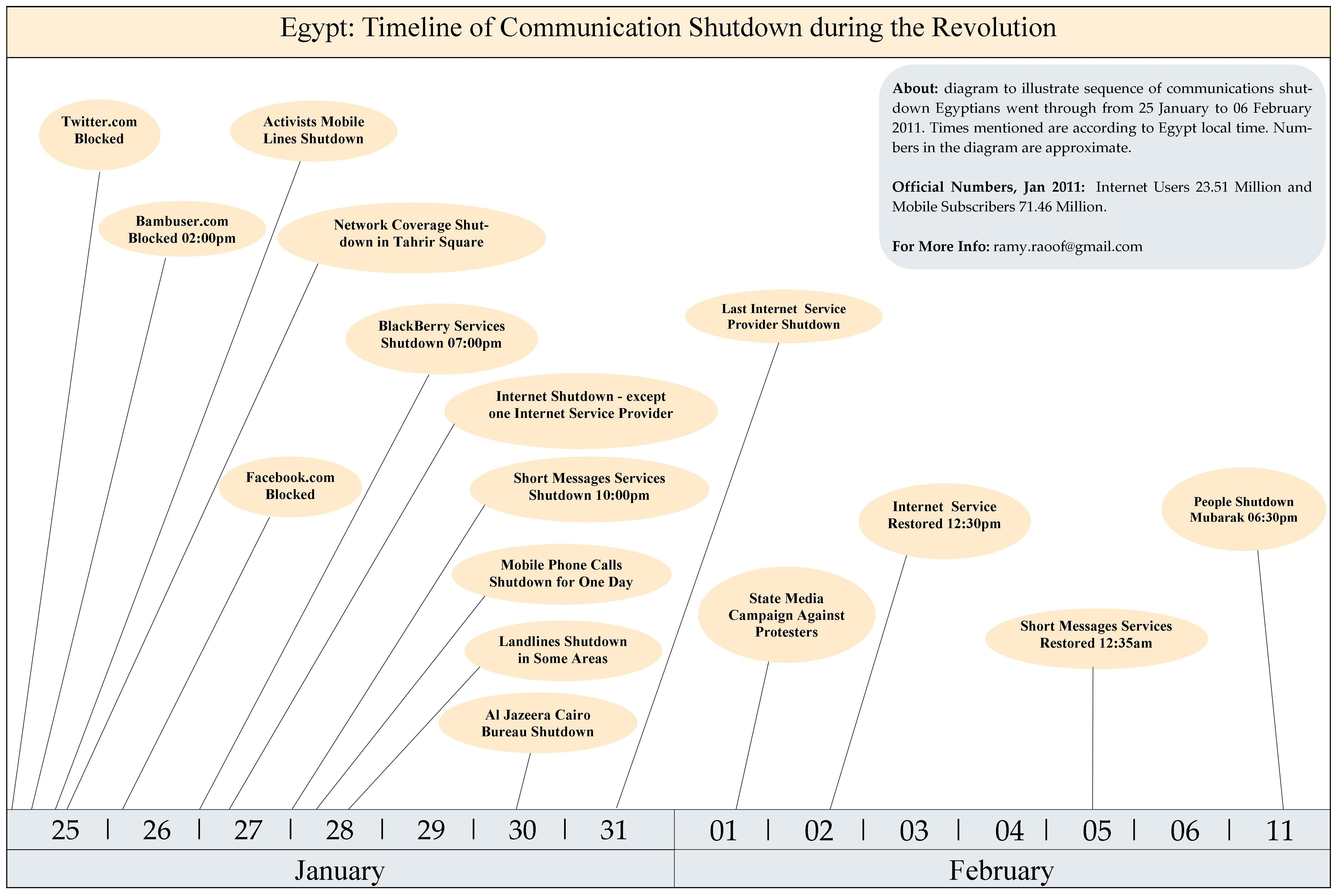 Domestic Responses To The Egyptian Revolution Of