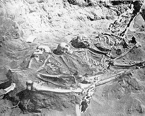 Skeletons of 3 Native Americans pierced with a...