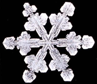 File:Snowflake11.png