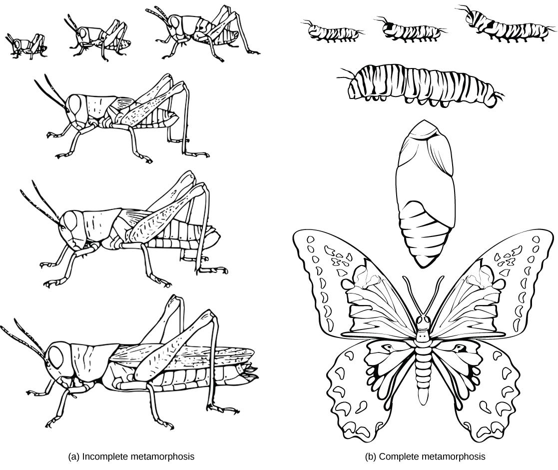 File Figure 27 01 02