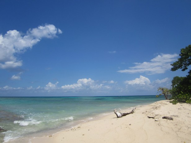 English: Turtle Beach, Buck Island, St. Croix,...