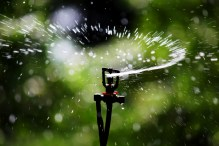 Simple pleasures of summer - sprinklers