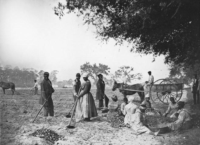 schiavitù stati uniti d'America