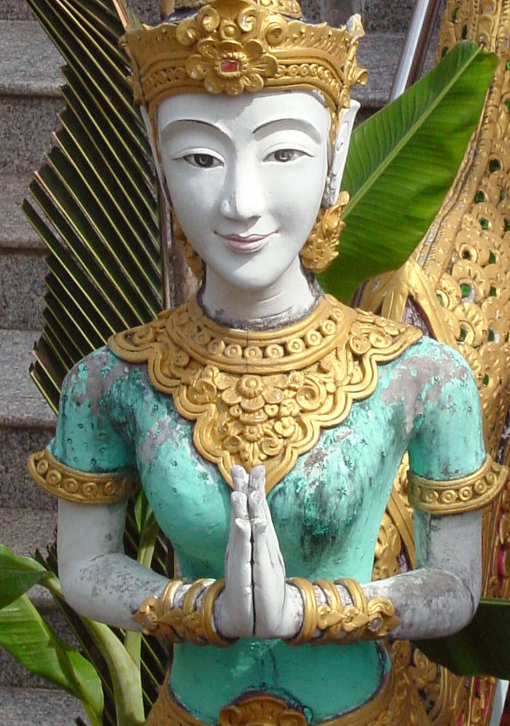 Anjali Mudra: Gratitude Namaste