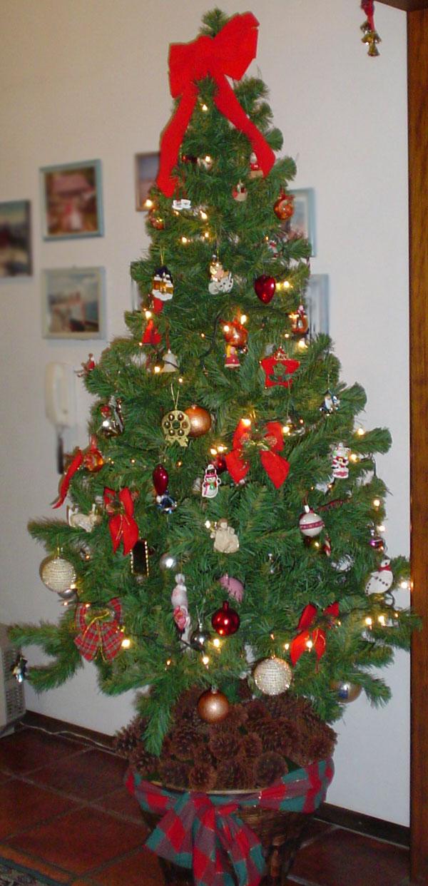 FileBrazilian Christmas Treejpg Wikimedia Commons