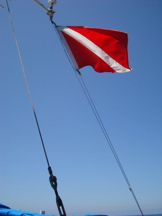 Bendera Diving (2/3)