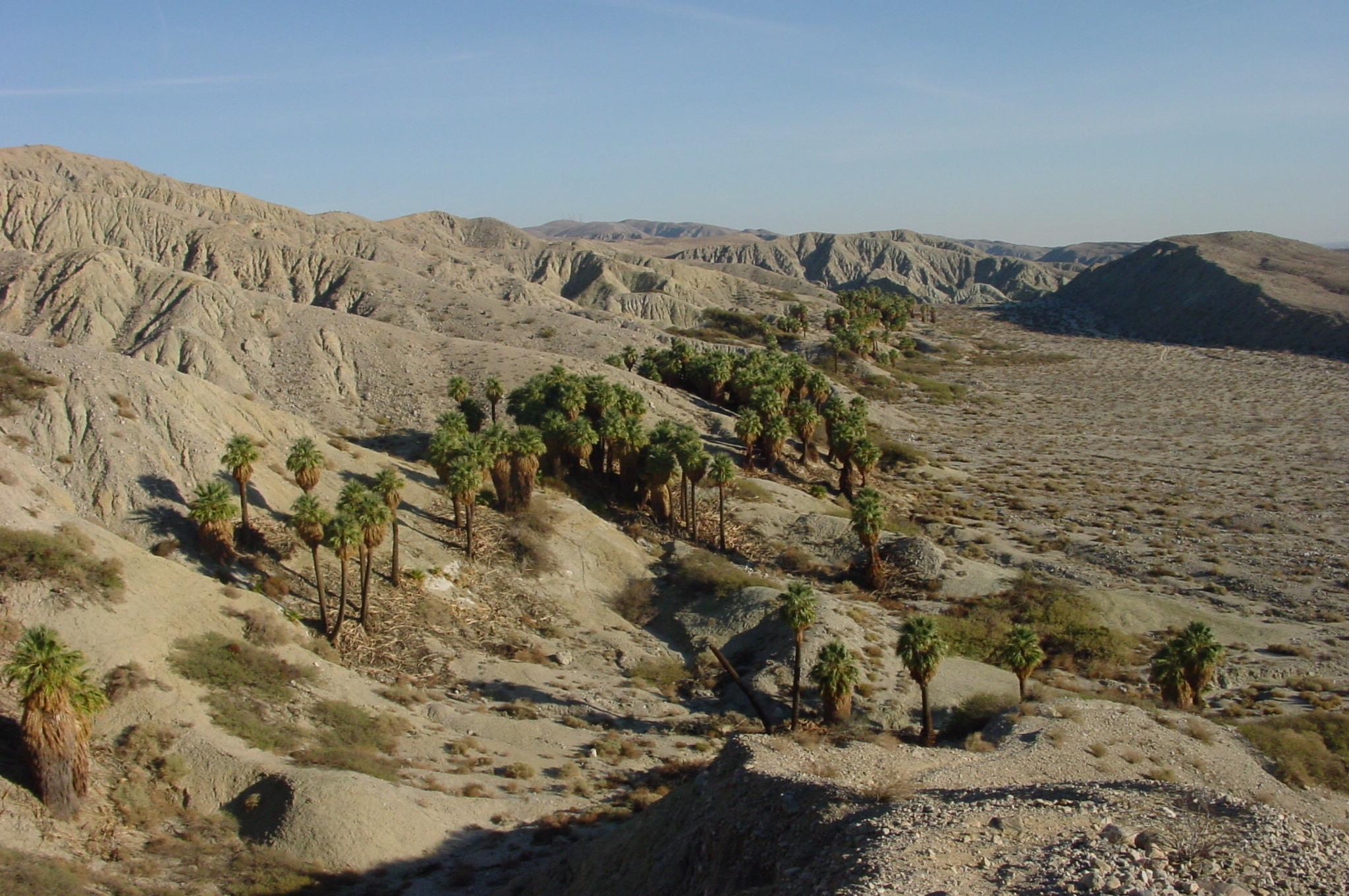 Deserts Of California