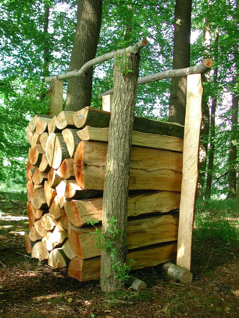 Wood Types Cuts Lumber