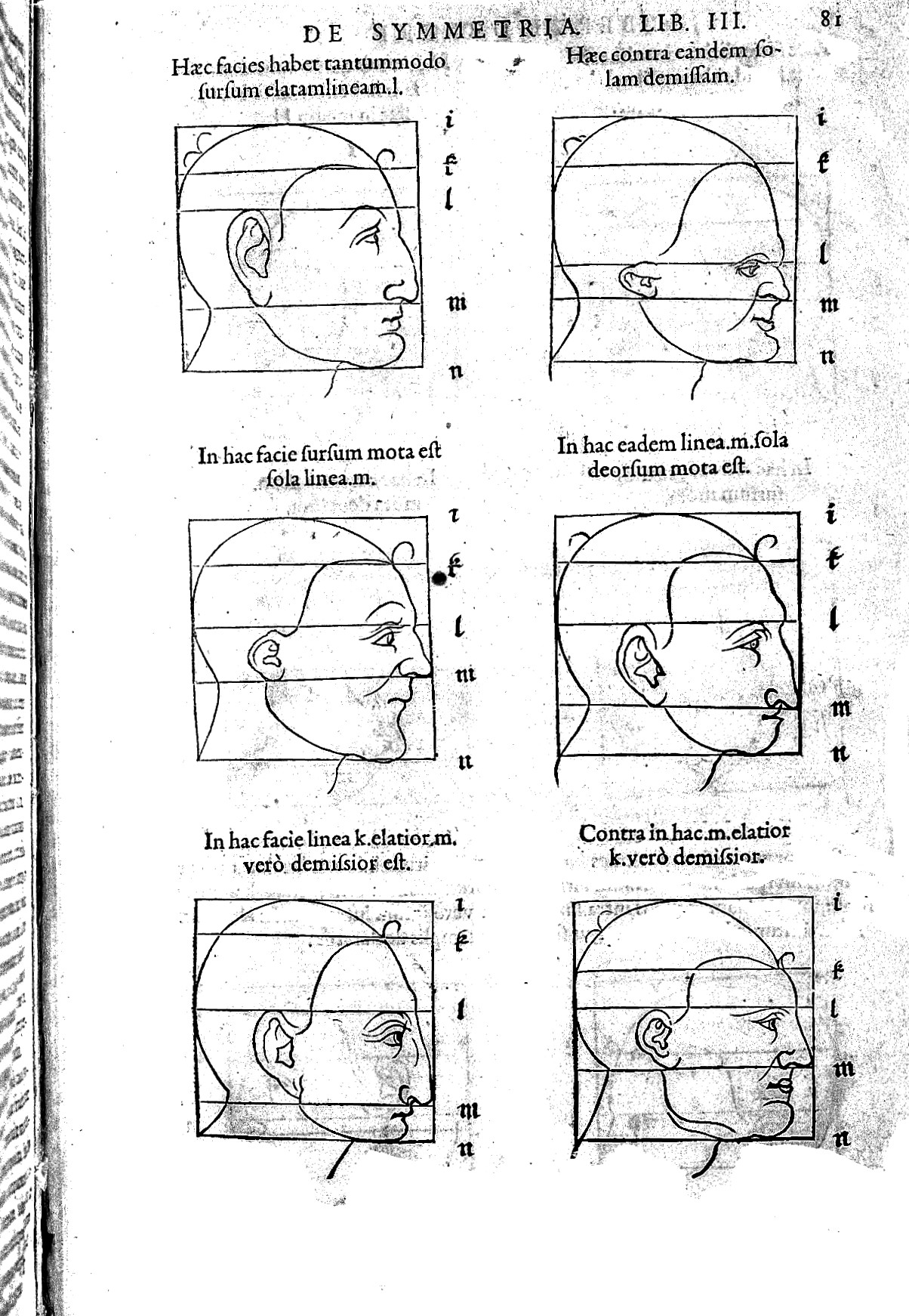 File Proportions Of Six Faces By A Durer Wellcome