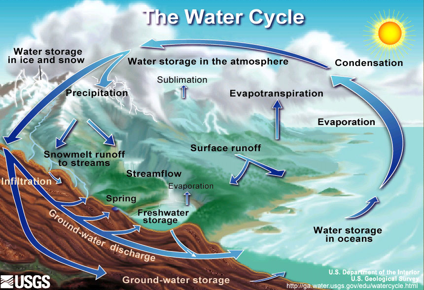Diagram of the water cycle from USGS