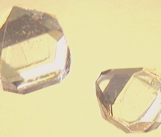 Xylitol crystals