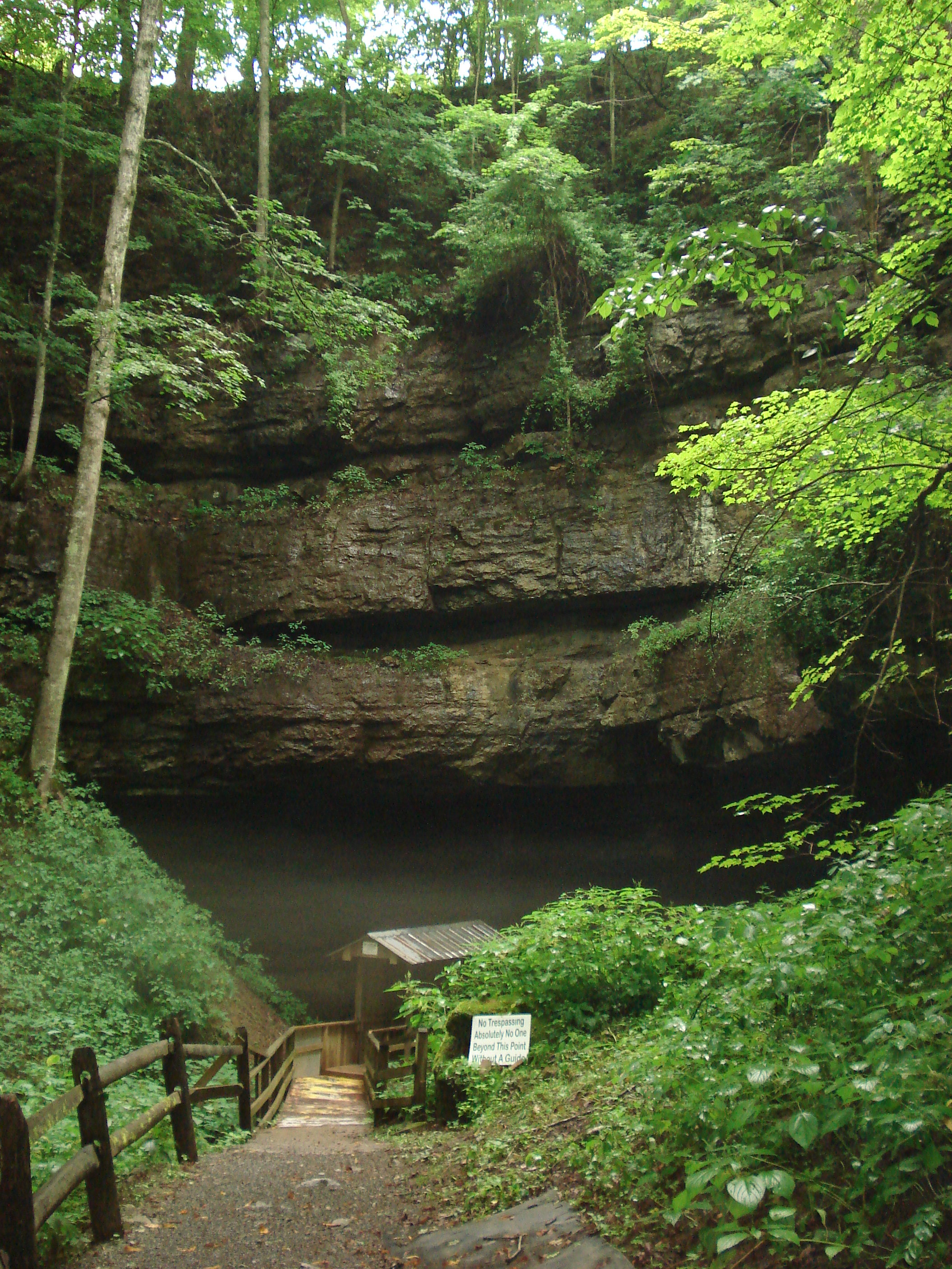Things To Do Near Summersville West Virginia