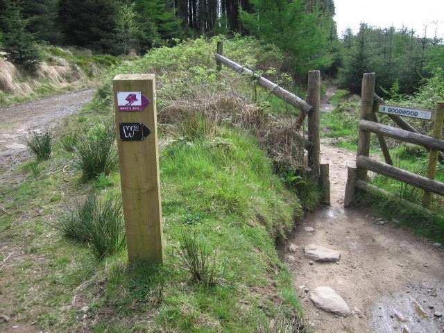 English: A new cycle trail White's Level (see ...