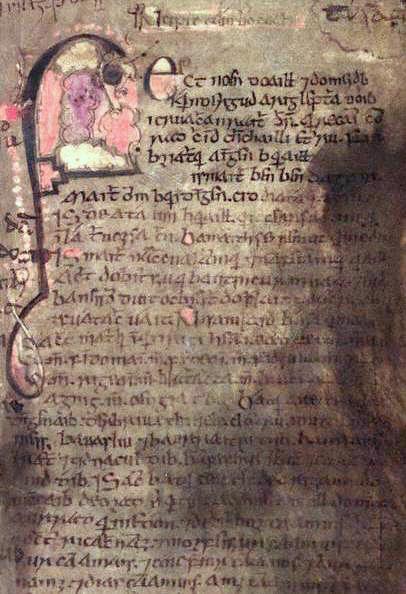 Página del Libro de Leinster