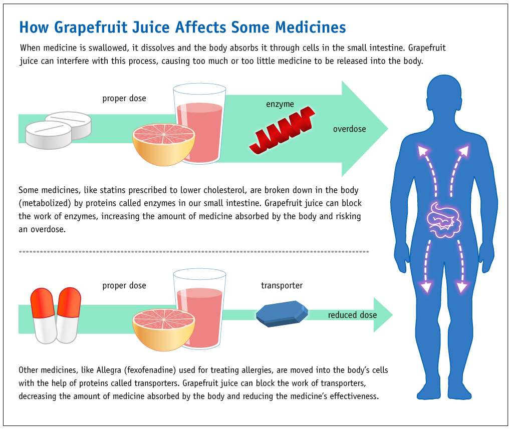 G Fruit Drug Interactions