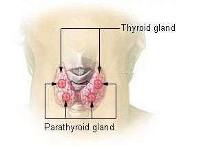 Avoiding radioactive iodine therapy for Graves Disease