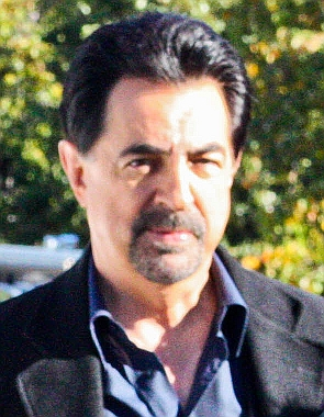 Joe Mantegna, Filming of the TV show Criminal ...