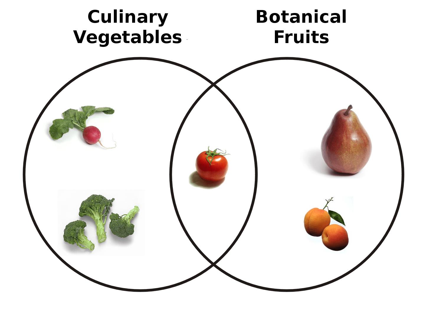 圖片來源wiki