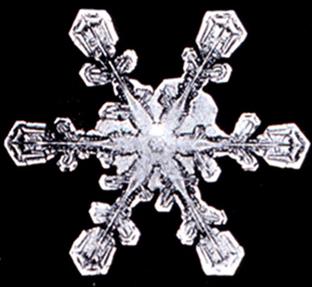 File:Snowflake6.png