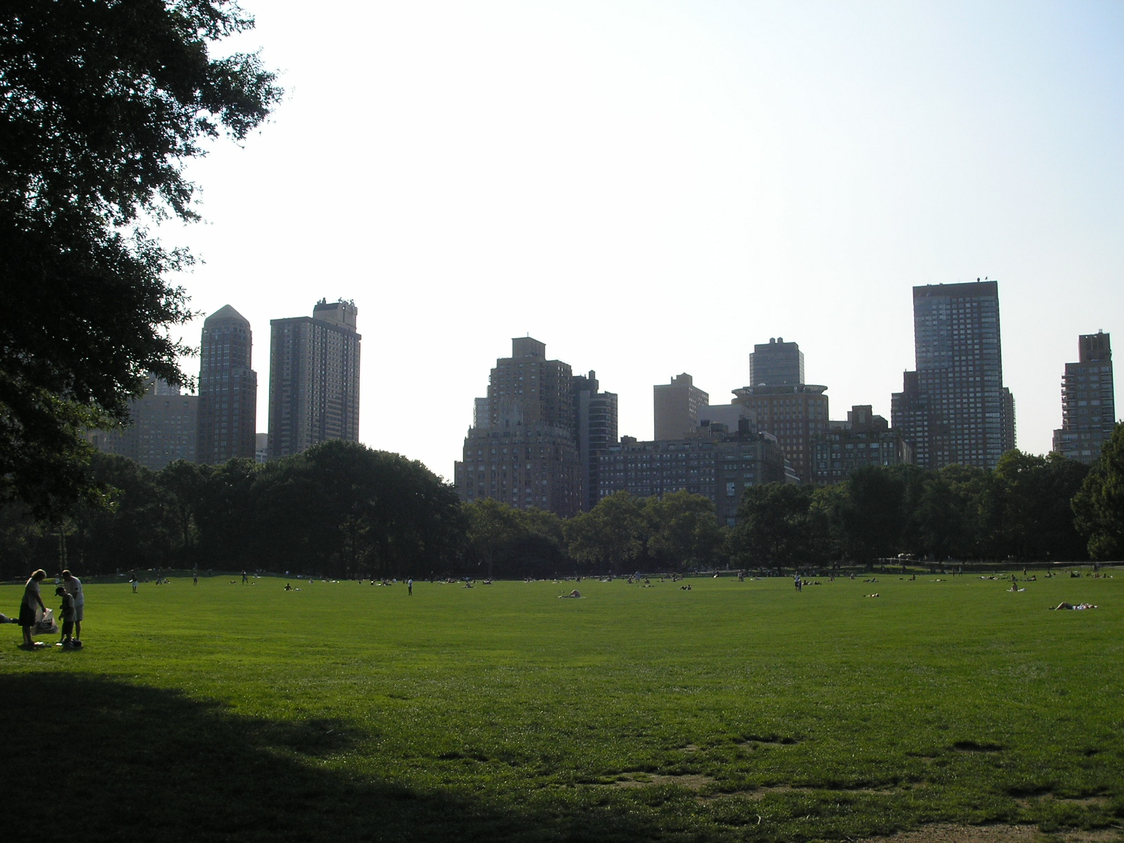 The Sheep Meadow in Central Park, New York Cit...