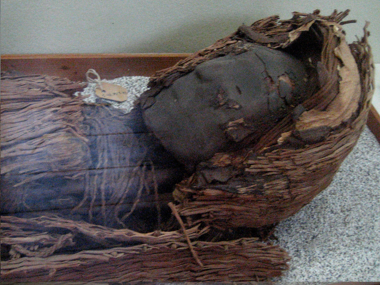 Momia de la cultura Chinchorro.