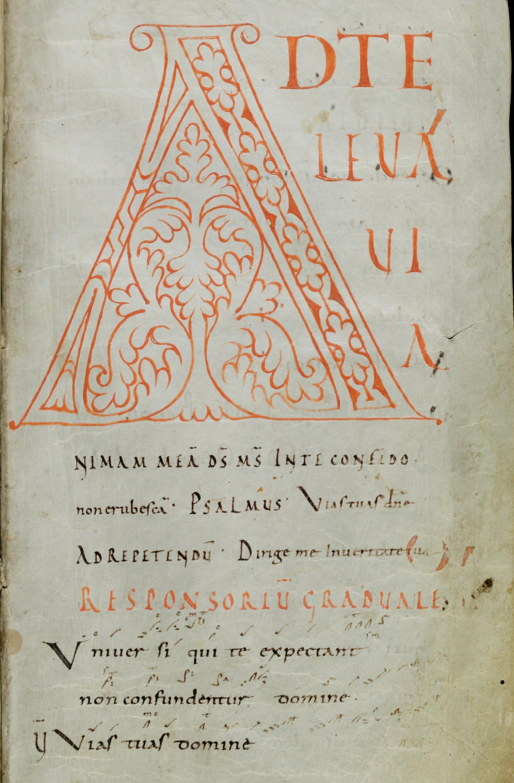 Gregorian Chant   Ars Novita