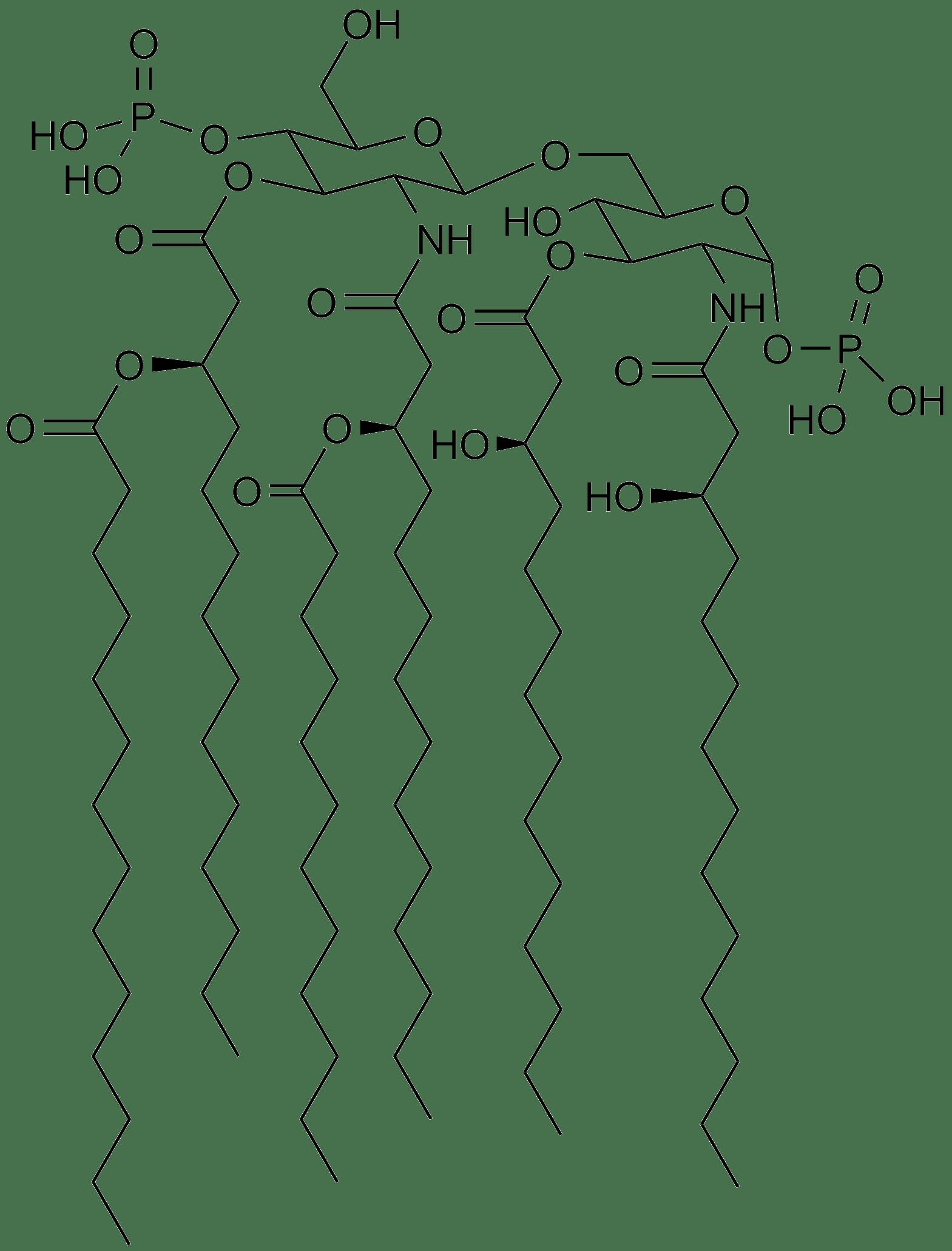 Saccharolipid