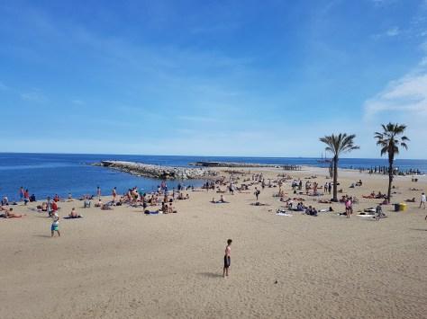 Image result for barceloneta beach